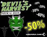 F2SEEDS.FR.PL - Najtańszy sklep z nasionami Cannabis|Konopi|Marihuany