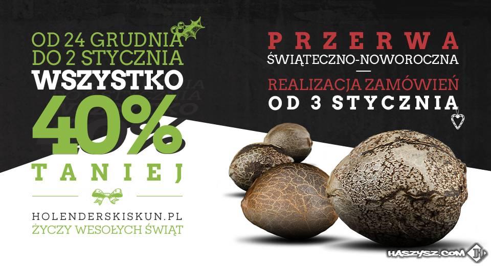 HolenderskiSkun.pl - ZAPRASZAM